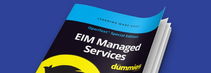 EIM Managed Services For Dummies eBook thumbnail